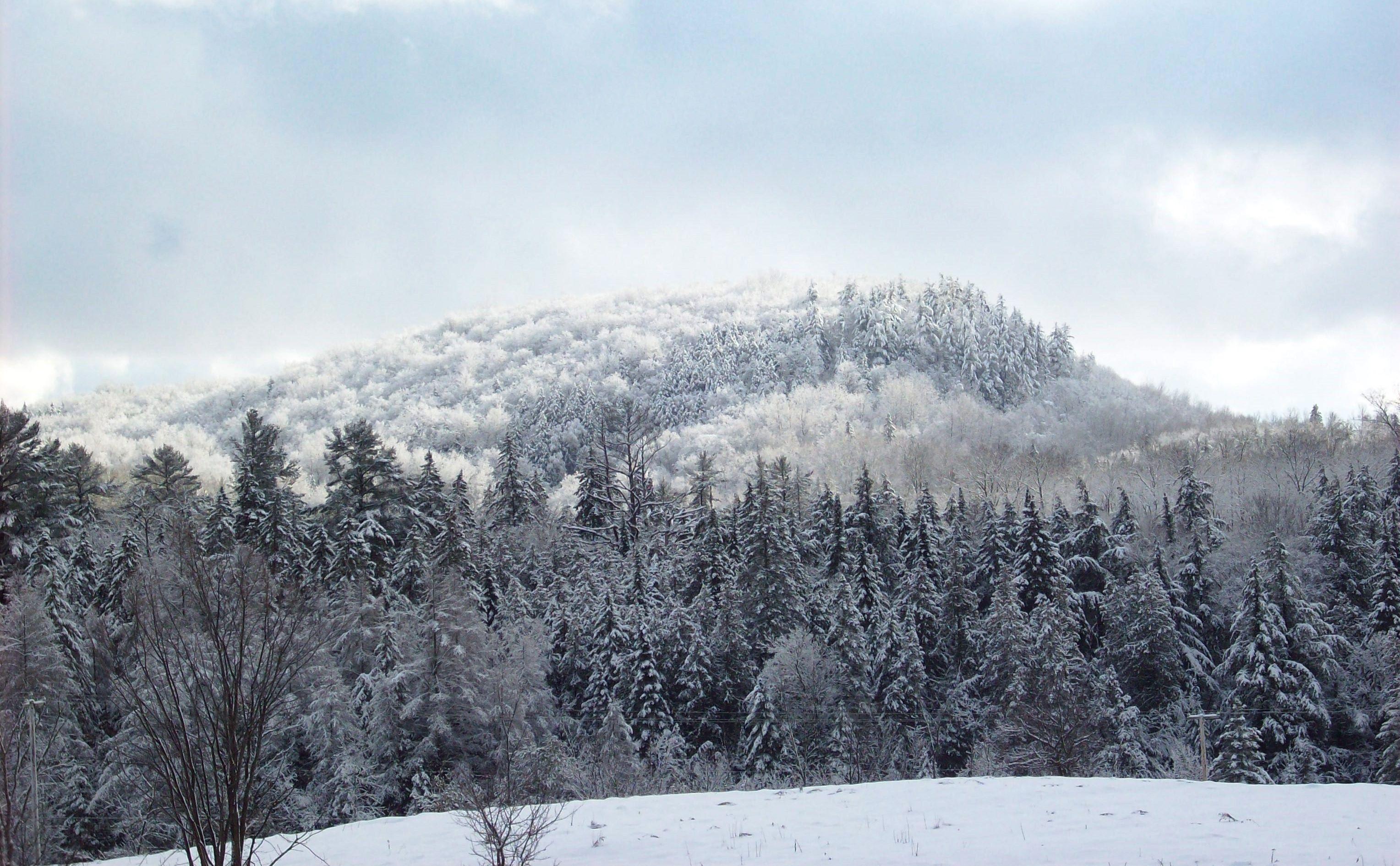 france-filiatreault-hiver